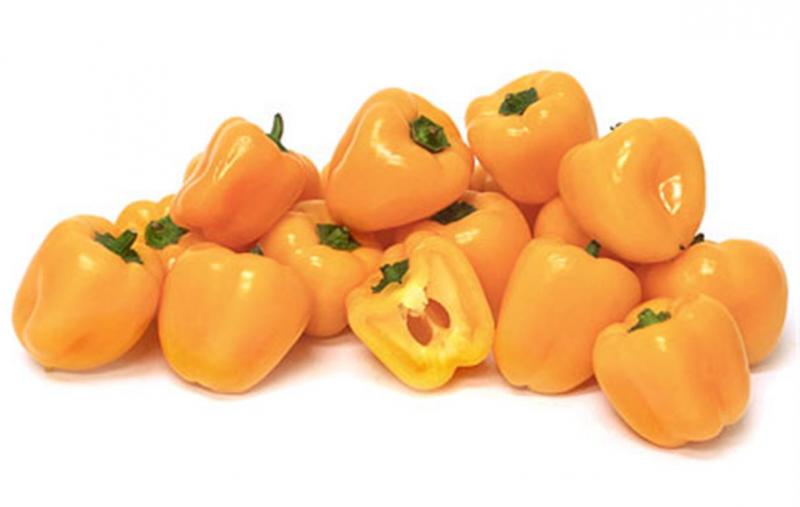 Mini yellow belle sweet pepper 20 seeds